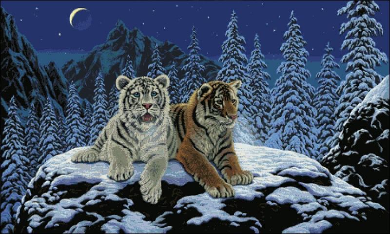 Вышивка тигрята в снегу
