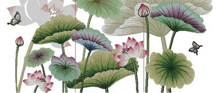 Astra61Другие цветы