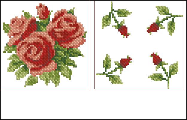 бискорню розы