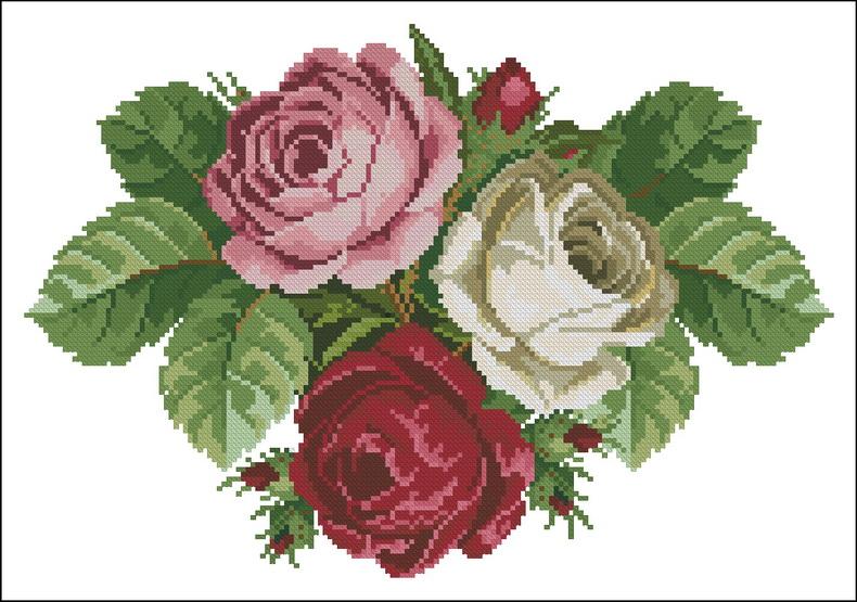 Вышивка схема садовые розы