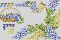 Виноград синий и белый