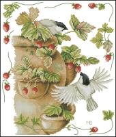 Strawberries & Birds