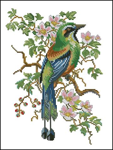 Bird-2 ?