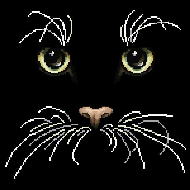 Схемы вышивки котов на черной канве