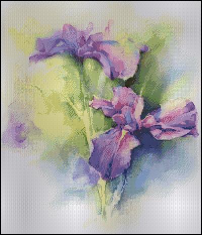 Ирисы. Фиолетовое чудо.