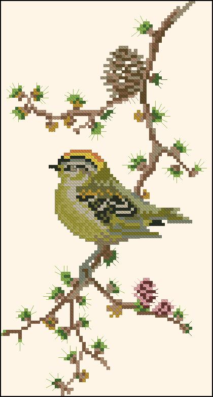 Вышивка крестом птичка на ветке