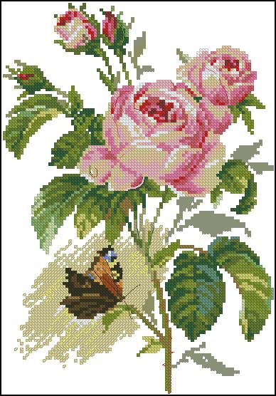 Вышивка роза и бабочка схема 773