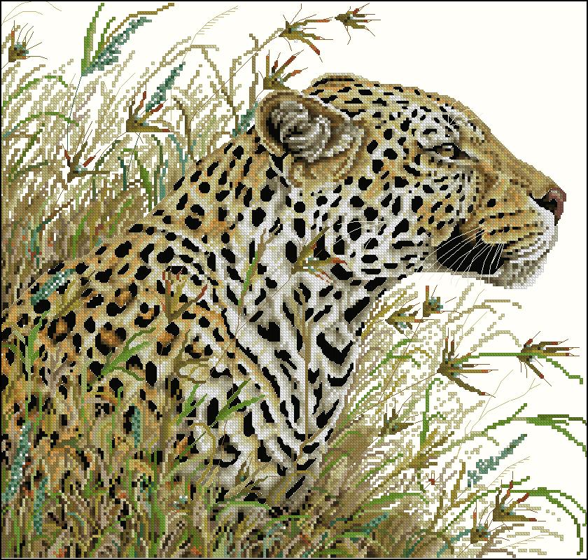 Вышивка крестом леопарды схема 25