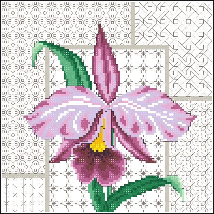 Орхидея на фоне